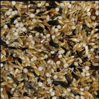 Alimenti Per Uccelli - Boccia Miscela Semi Per Spinus - Cardellini e Incardellati Kg. 1