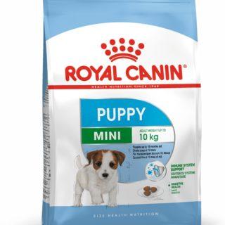 3182550792929-royal-canin-mini-puppy-800gr